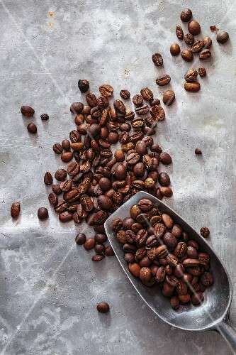 Coffee beans with a metal scoop