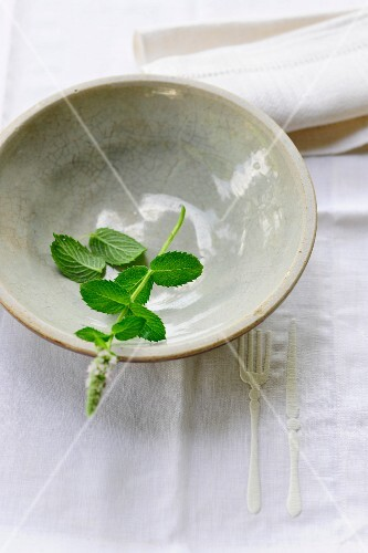 A sprig of fresh mint in a ceramic bowl