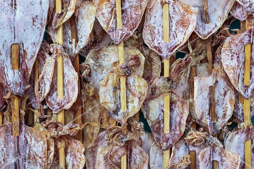 Dried squid on bamboo sticks