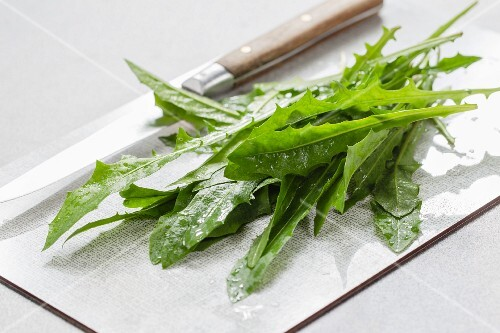Young dandelion leaves on a chopping board