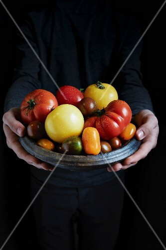 Hands holding a bowl of tomatoes