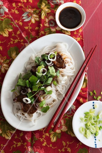 Teriyaki duck with rice noodles, spring onions and coriander