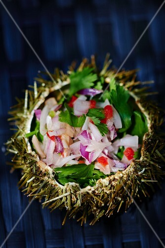 Ceviche served in a sea urchin