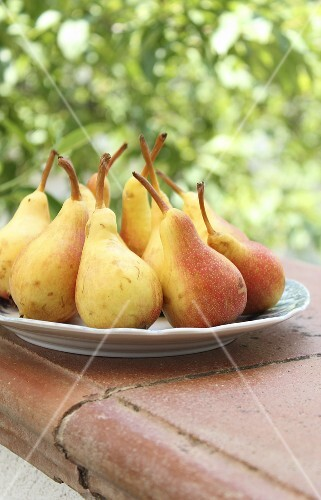 Pears on a plate on a garden wall