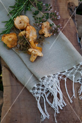 Wild mushrooms and herbs lying on linen napkins with macrame trim