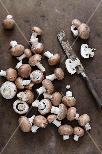 Fresh brown mushrooms with an old knife (seen from above)