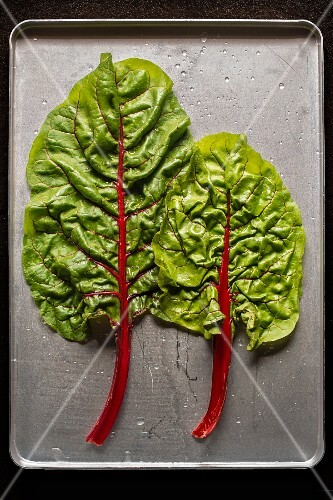 Two chard leaves (seen from above)