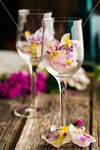 Ice cubes with lilac flowers and dandelion flowers