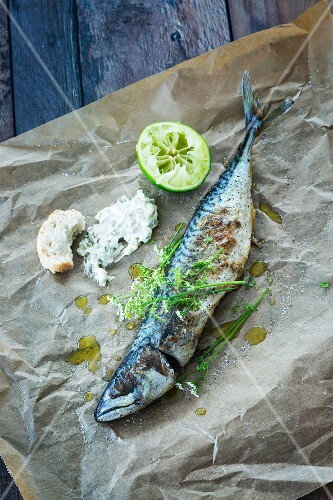 Grilled mackerel with remoulade and chervil flowers