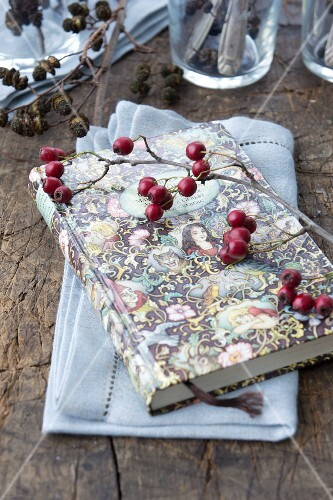 A book with hawthorn berries