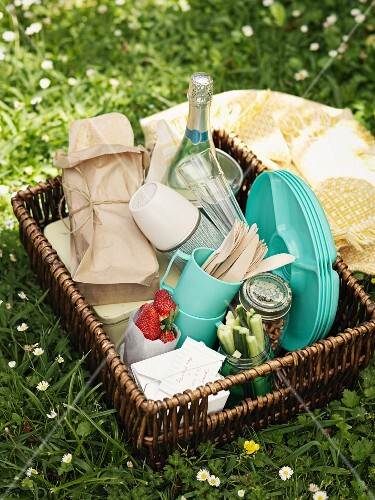 A picnic basket in a meadow
