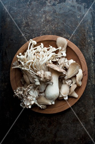 Various fresh mushrooms in a wooden bowl on a metal surface