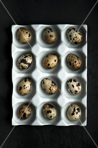 Quails eggs in a ceramic egg box
