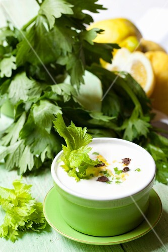 Tzatziki with celery, lemons and olives