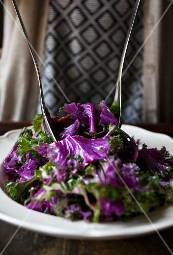 Purple kale salad with pine nuts, dried tomatoes and salad servers