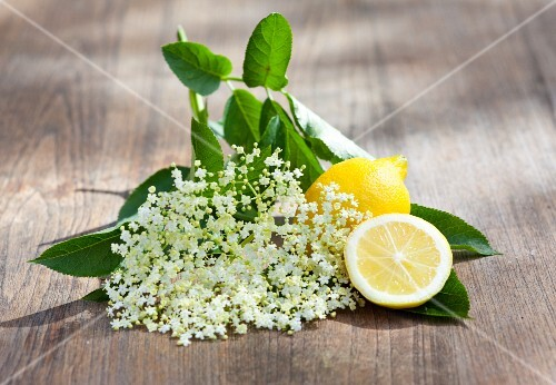 Elderflowers and lemons on a wooden surface