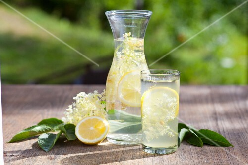 Elderflower juice with lemons and elderflowers on a wooden table