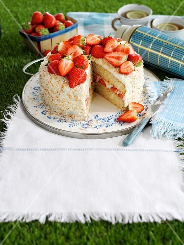 Sponge cake with coconut and strawberries for a picnic