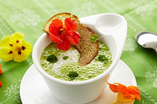 Foamy nasturtium soup with a black bread crisp