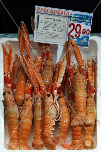 Langoustines at the fish market in Bilbao, Basque County, Spain