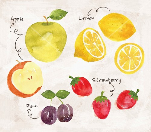 An arrangement of apples, lemons, plums and strawberries (illustration)