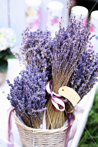 Basket of lavender bunches