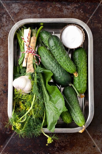 Ingredients for sour cucumbers: cucumbers, garlic, horseradish roots and leaves, dill and salt
