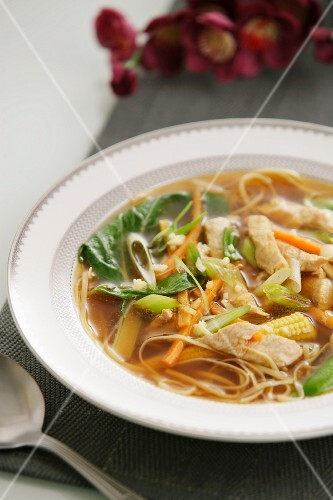 Chicken soup with noodles