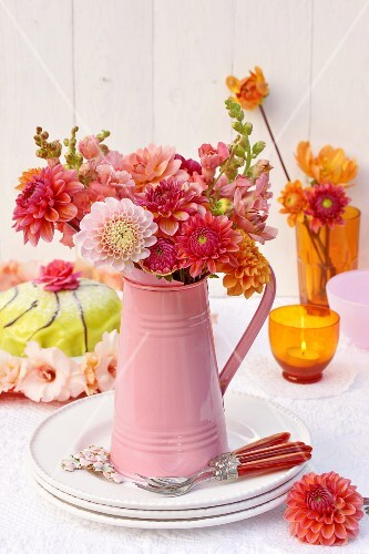 A bunch of dahlias in a pink jug