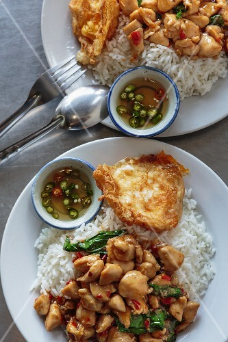 Spicy chicken with Indian basil on a bed of rice (Thailand)