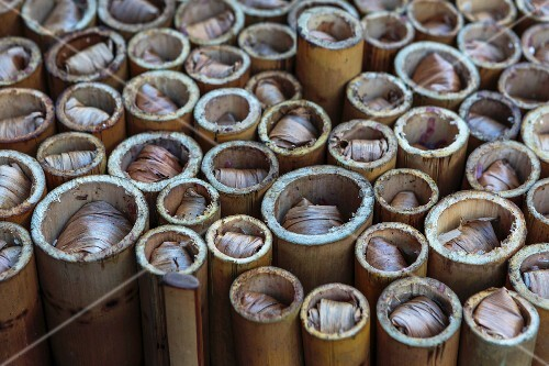 Bamboo tubes filled with rice (Thailand)