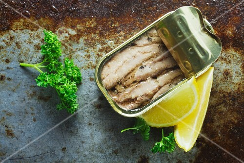 An open tin of sardines on a metal surface