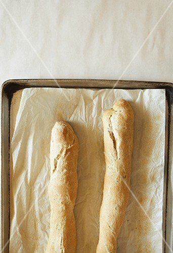 Two baguette on a baking tray lined with baking paper (seen from above)