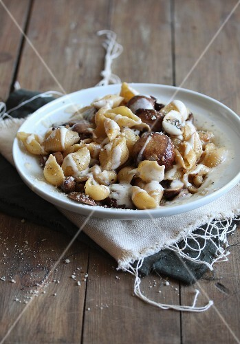 Shell pasta with mushrooms and a creamy sauce