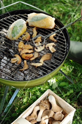 Mushrooms on a barbecue