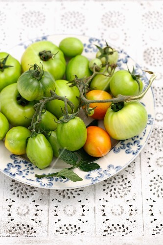Green vine tomatoes on a plate