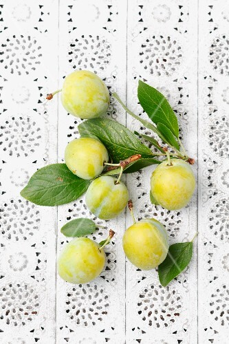 Green plums (Italica variety) on a lace surface