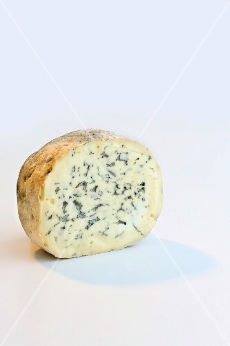 Fourme D Ambert (blue cheese from Auvergne, France)