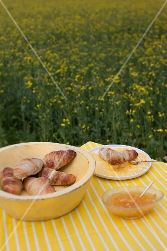 Croissants and jam on table in field of flowering rapeseed