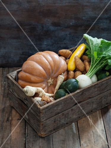 A crate of organic vegetables with pumpkin, potatoes, courgette, turnips and parsnips