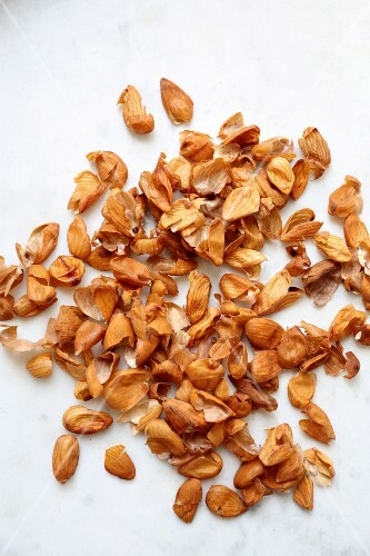 Scattered almond shells on a marble surface