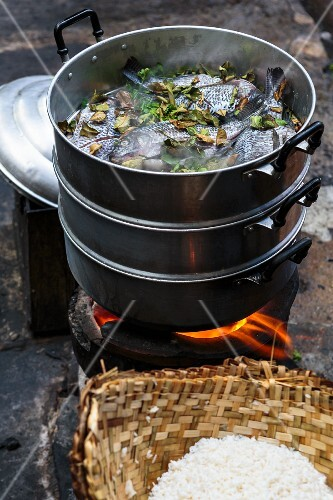 Steamed fresh water fish with kaffir lime leaves in a steamer in Bangkok, Thailand