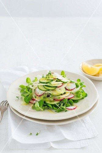 Cucumber and fennel salad with radishes