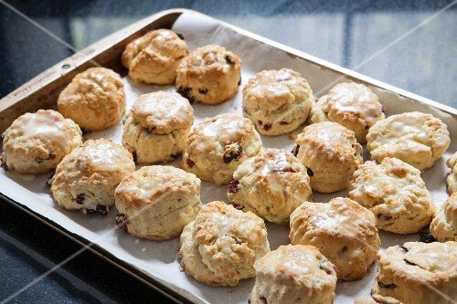 Cranberry and orange scones on a baking tray