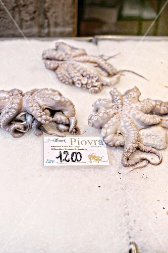 Fresh octopus at a fish market in Venice