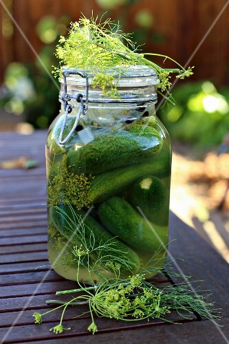 A jar of gherkins on a garden table with dill flowers and onions