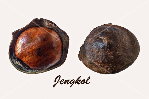 Two jengkol fruits