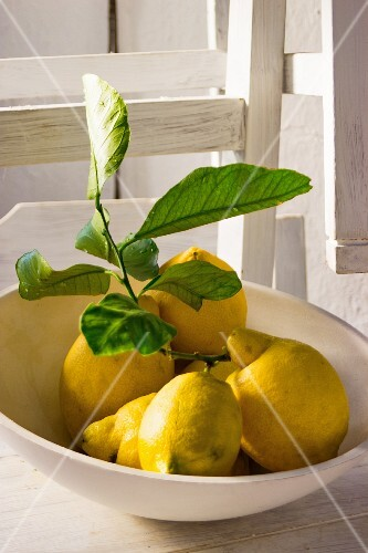 Lemons with leaves in a white bowl on a white wooden chair