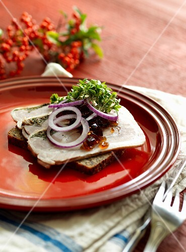 A slice of bread topped with pork, onions and cress