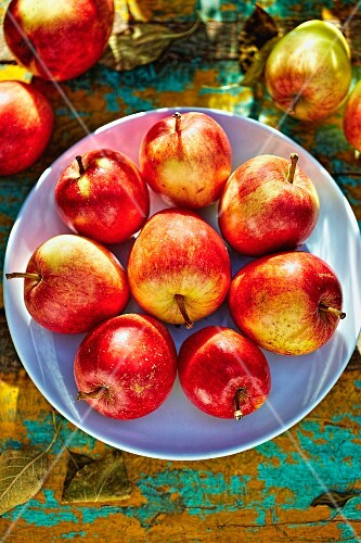 Fresh red autumnal apples on a plate (seen from above)